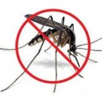 Aplikasi Android Pengusir Nyamuk Terbaik